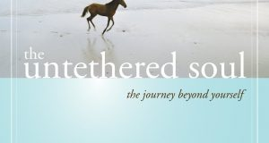 The Untethered Soul: The Journey
